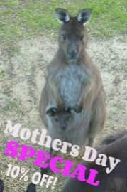 Emu Loader 8